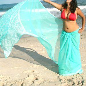 Tamil girls transparent tight blouse
