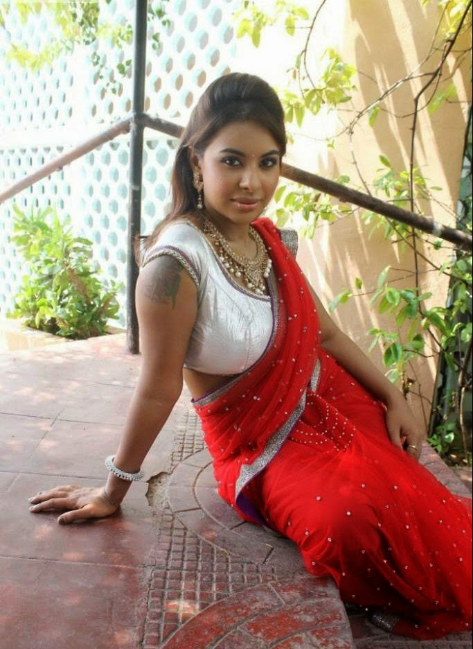 Indian bhabhi saree seems brilliant